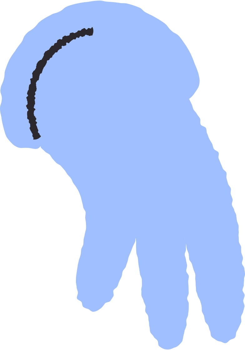 glove Clipart illustration in PNG, SVG