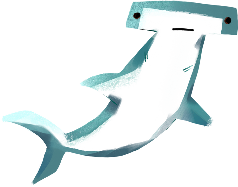 style hammerhead shark Vector images in PNG and SVG | Icons8 Illustrations