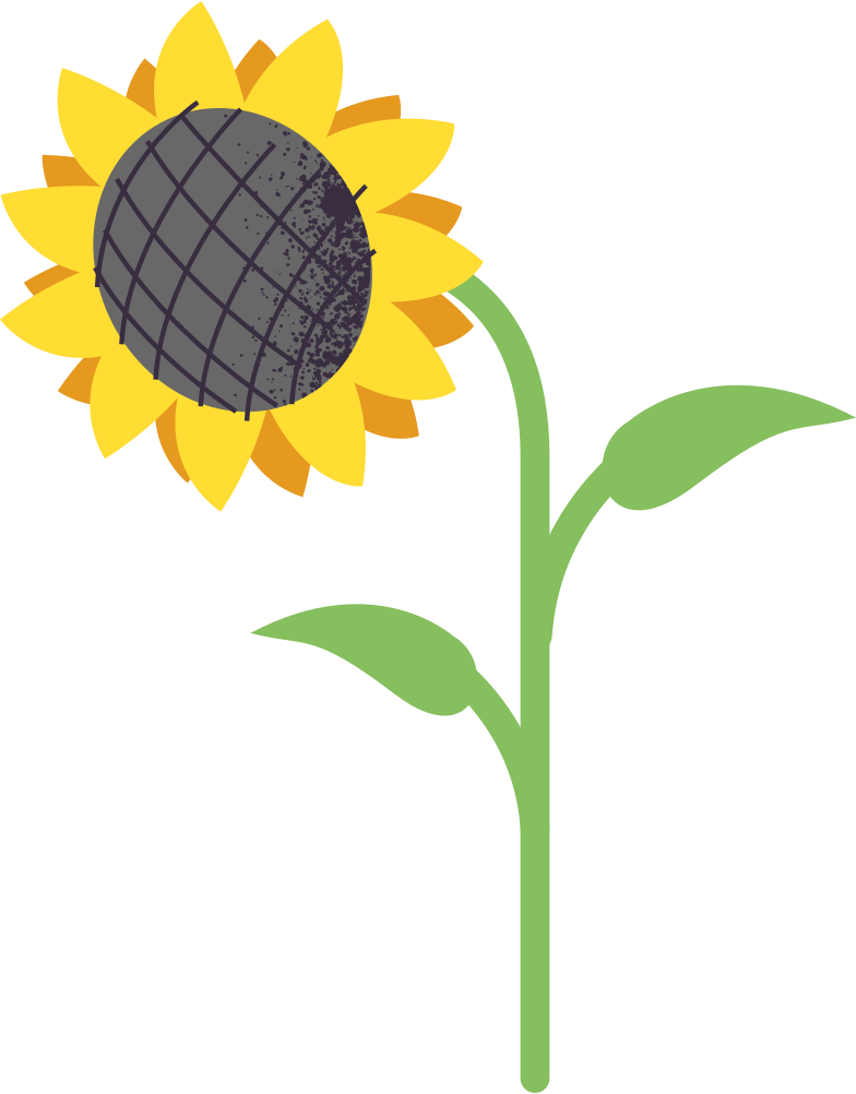 style sunflower Vector images in PNG and SVG | Icons8 Illustrations
