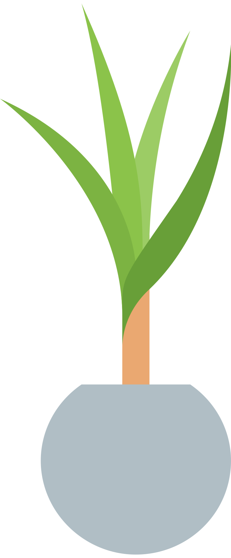 style plant in pot Vector images in PNG and SVG | Icons8 Illustrations