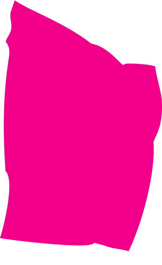 style pink rectangle Vector images in PNG and SVG   Icons8 Illustrations