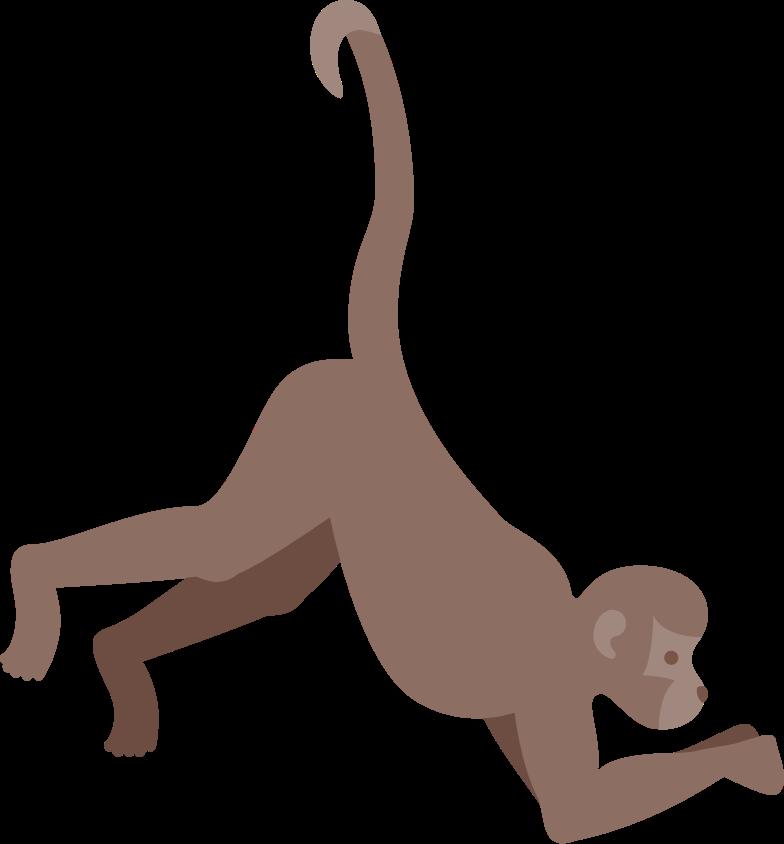 monkey Clipart illustration in PNG, SVG
