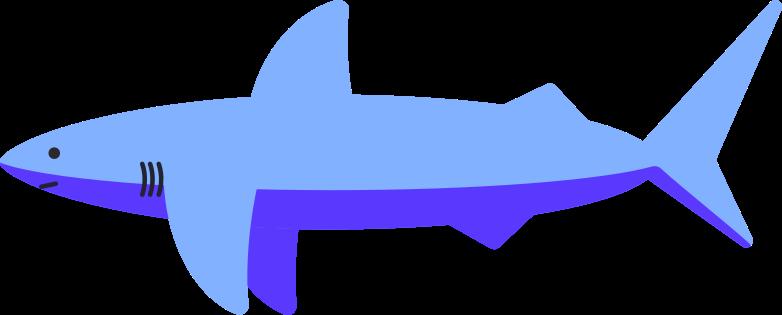shark Clipart illustration in PNG, SVG