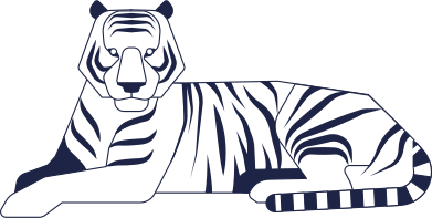 style tiger images in PNG and SVG | Icons8 Illustrations