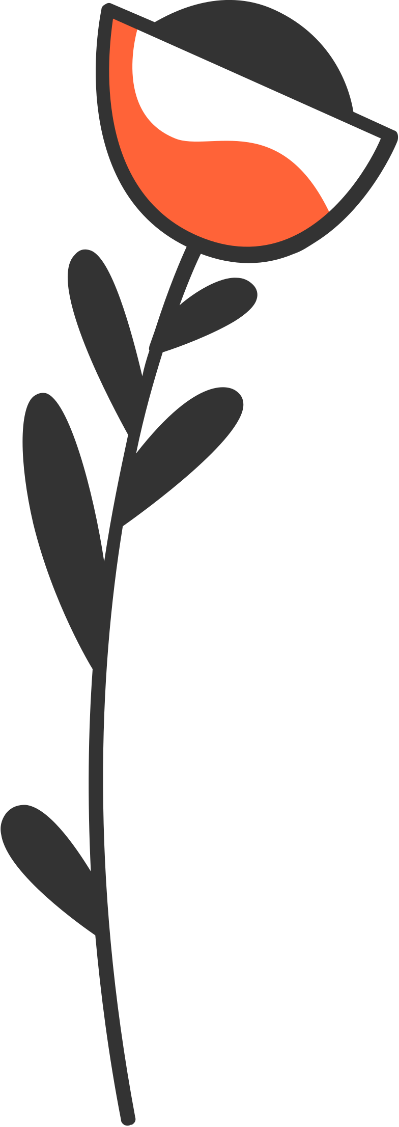 Ilustración de clipart de Flor en PNG, SVG
