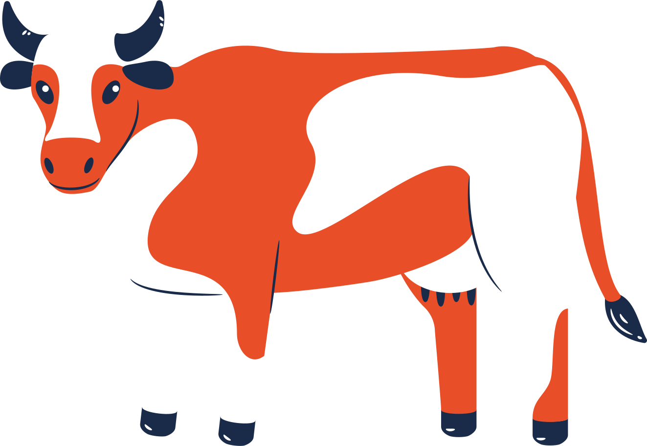 cow standing calm Clipart illustration in PNG, SVG