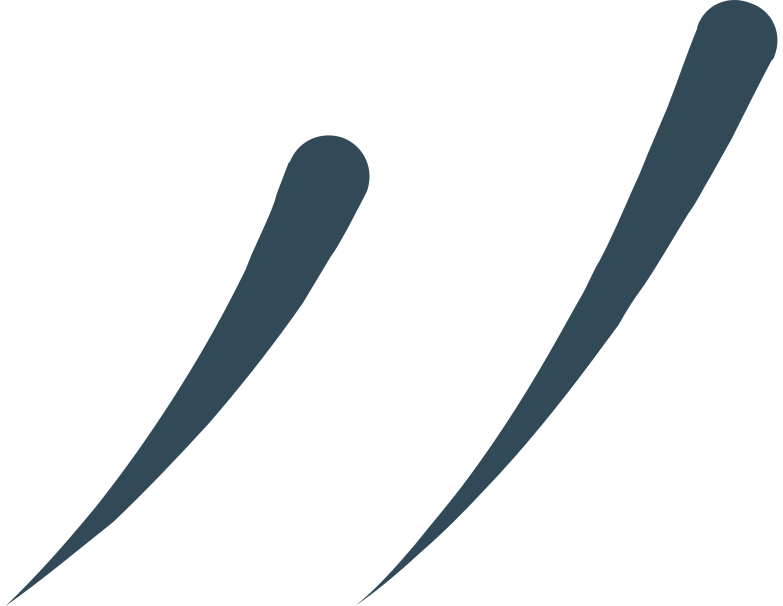Immagine Vettoriale linee decorative in PNG e SVG in stile  | Illustrazioni Icons8
