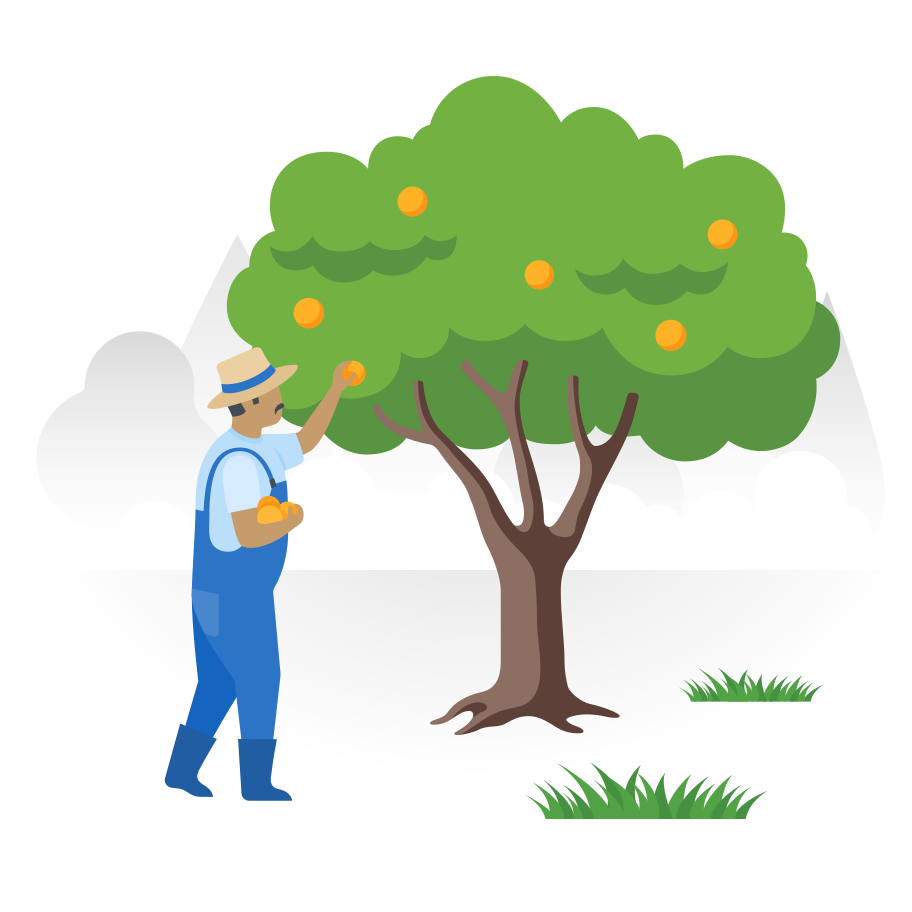 Pick up fruits in the farm Clipart illustration in PNG, SVG
