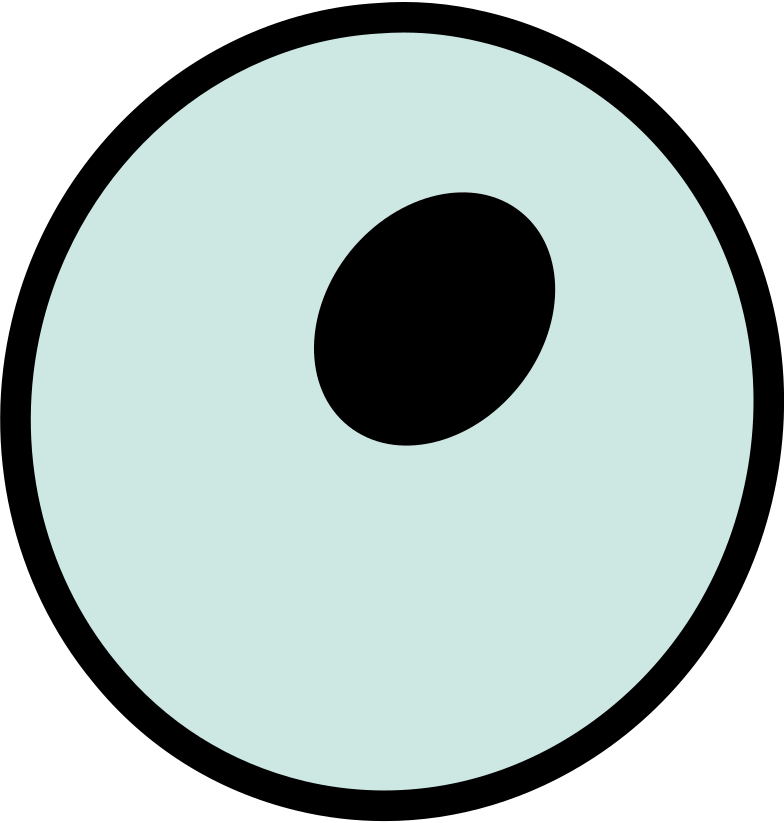 eye Clipart illustration in PNG, SVG