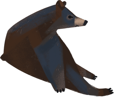 style bear images in PNG and SVG   Icons8 Illustrations